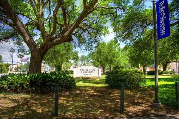 msu Trường Đại học công lập McNeese (MSU) tại Mỹ