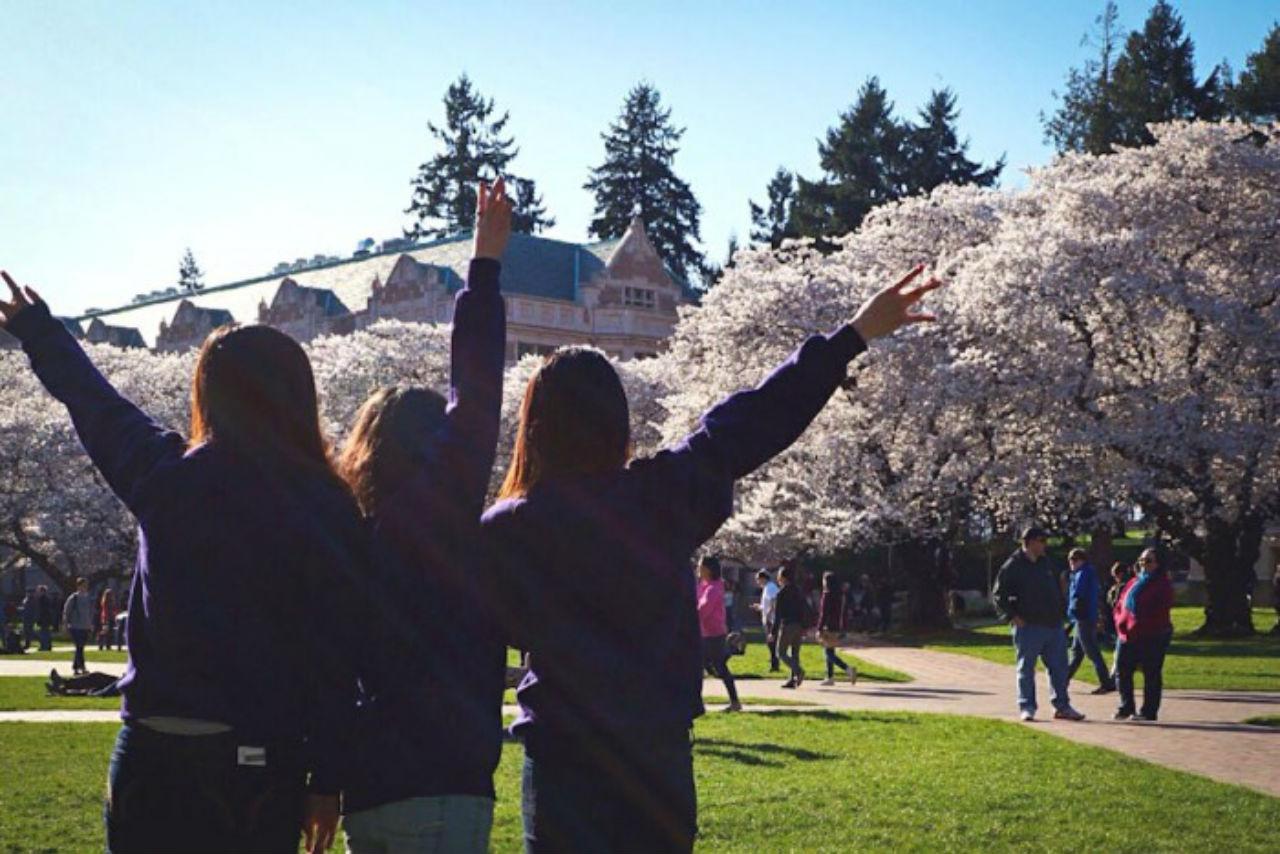Bạn đã tốt nghiệp vào mùa xuân này, không có nghĩa là bạn phải rời khỏi nước Mỹ xinh đẹp