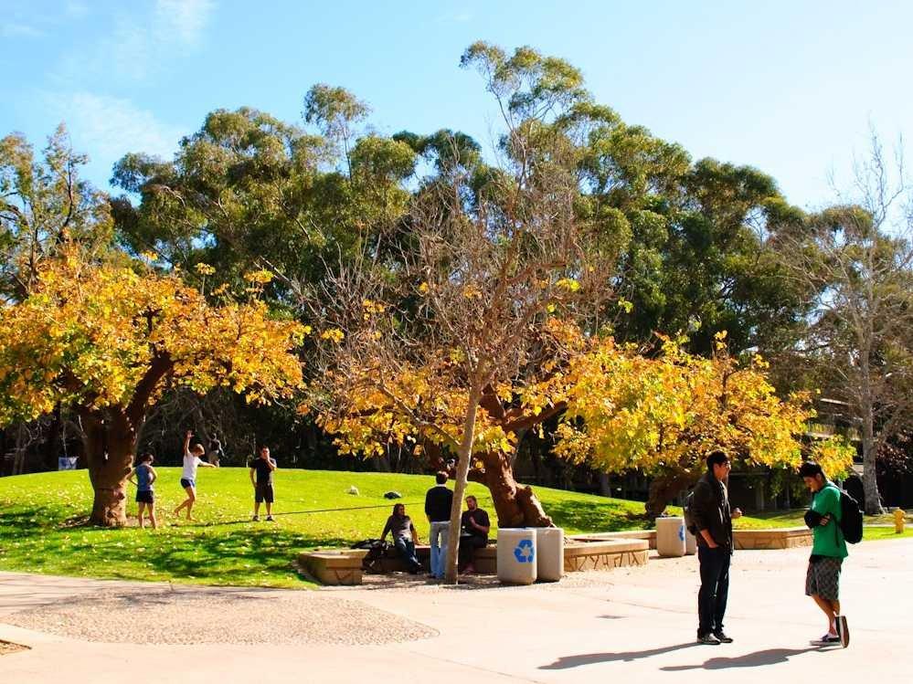 no-4-university-of-california-at-san-diego 10 đại học công lập tốt nhất Hoa Kỳ 2015