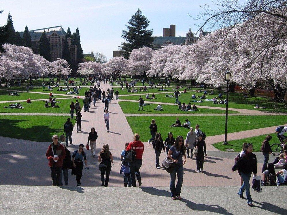 no-8-university-of-washington-at-seattle 10 đại học công lập tốt nhất Hoa Kỳ 2015